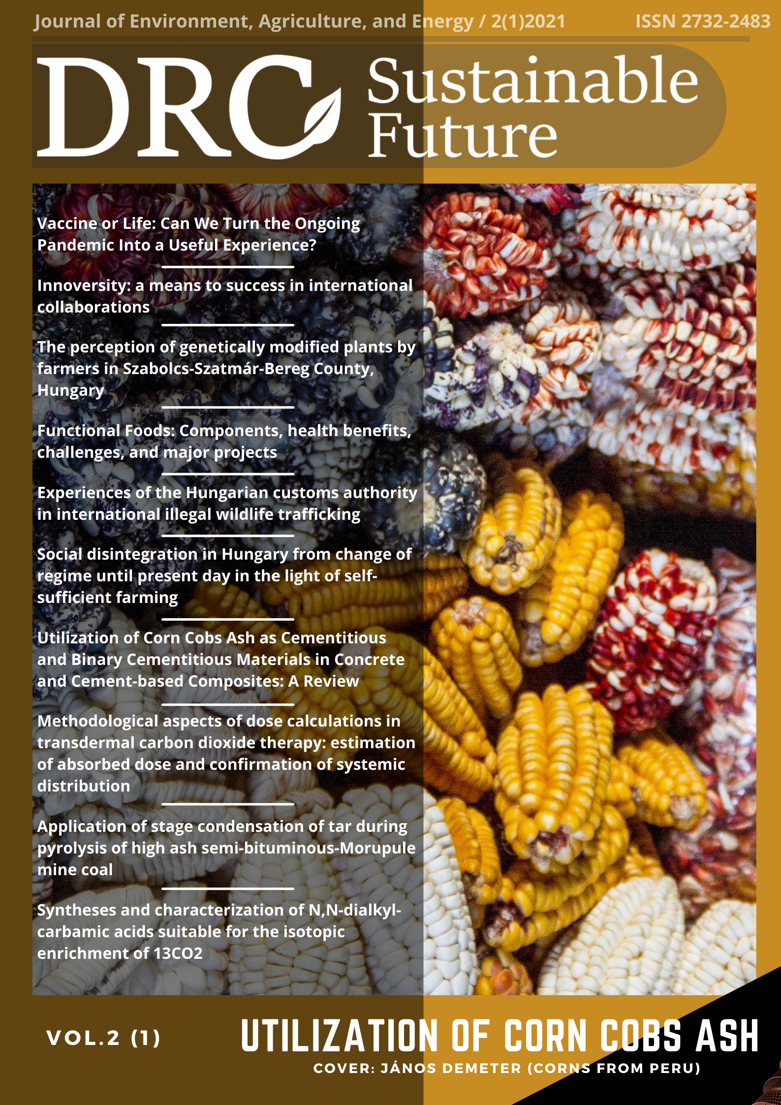 DRC Sustainable Future: Journal of Environment, Agriculture, and Energy