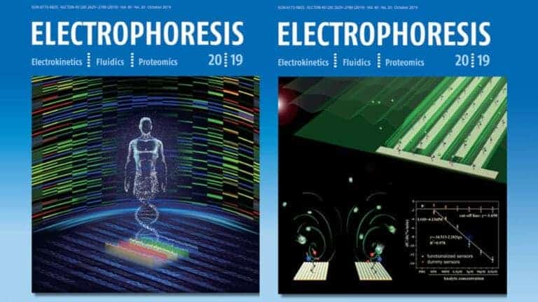 Read more about the article Authors' reply to the commentary in the journal of Electrophoresis