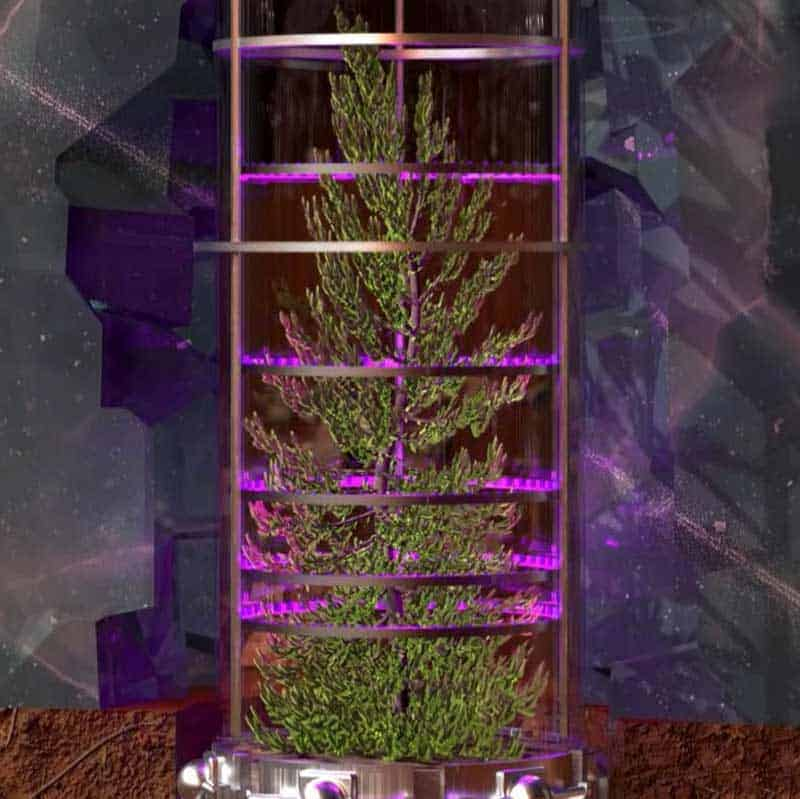 Finalizing plant choice (rooting tests finish)
